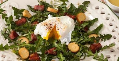 Salade de pissenlits comme une Lyonnaise à la saucisse de Morteau et son oeuf poché.